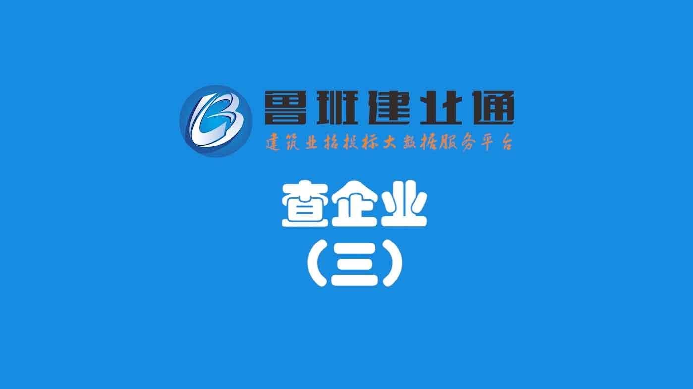 08.鲁班乐标-查企业(三)