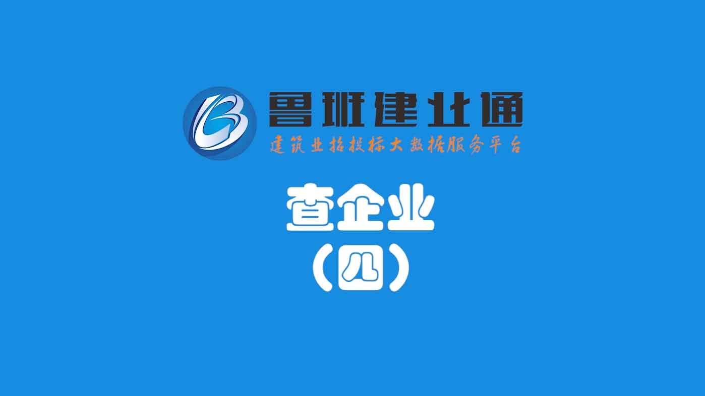 09.鲁班乐标-查企业(四)