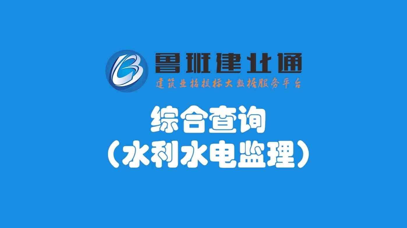 23.鲁班乐标-综合查询(水利水电监理)