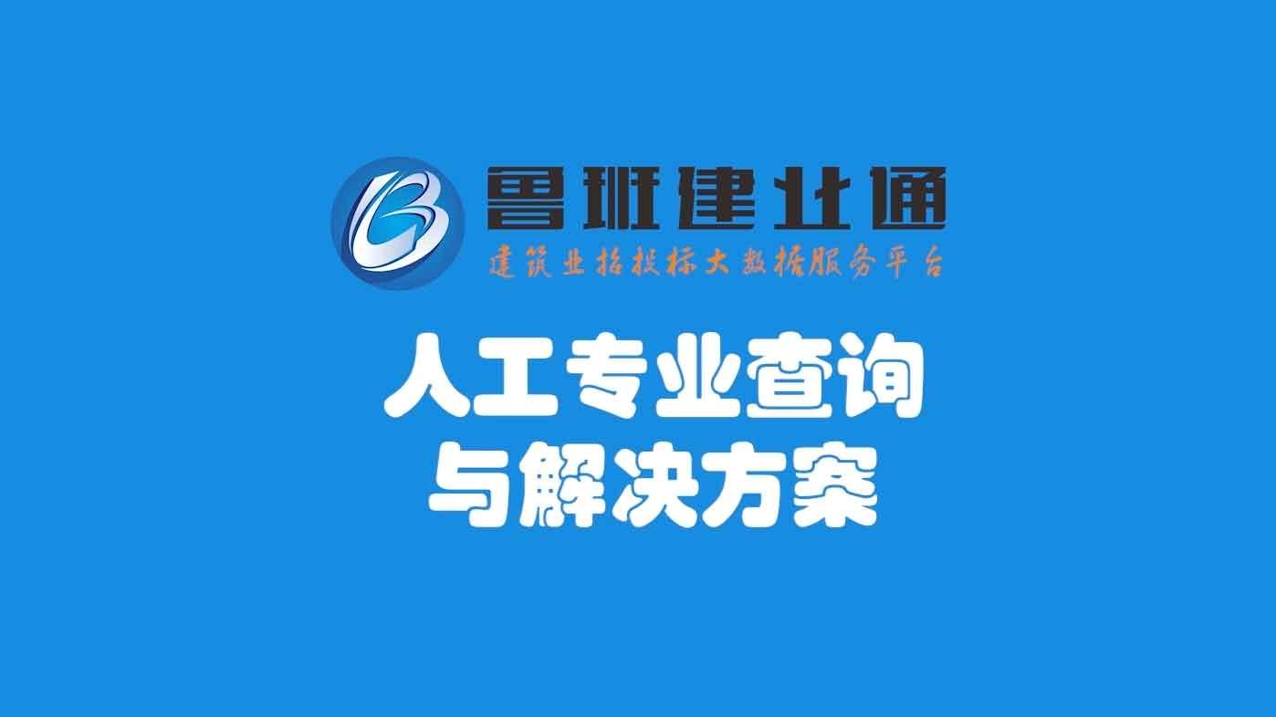 26.鲁班乐标-人工专业查询与解决方案